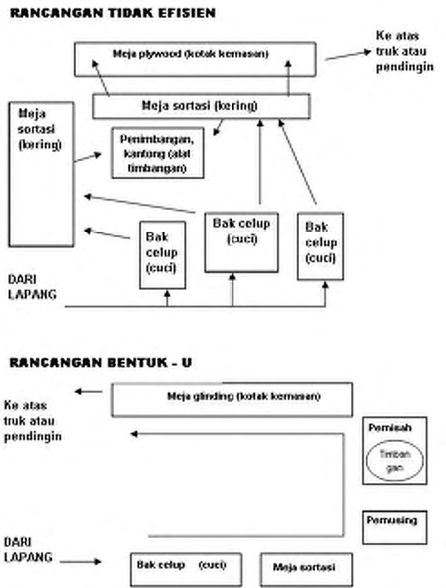 Operasi Bangsal Pengemasan III - 6 Sumber: Meyer et al. 1999. Work Efficiency Tip Sheet: Packing shed layout.