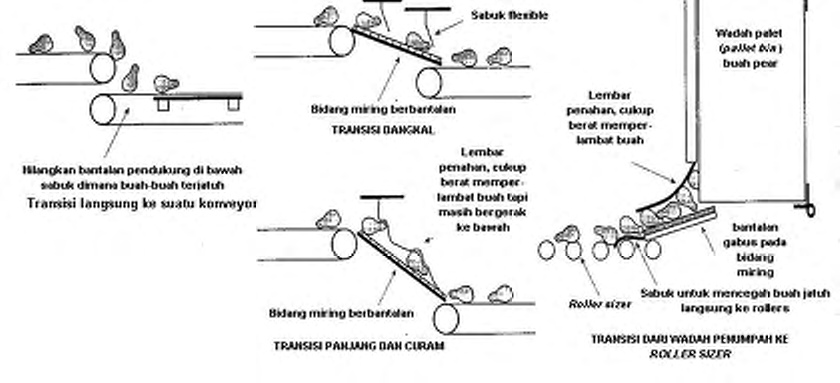 Operasi Bangsal Pengemasan III - 9 Sumber: Thompson et al. 2002. Preparation for fresh market. pp.67-79. In: Kader, A.A. (ed). Postharvest Technology of Horticultural Crops.