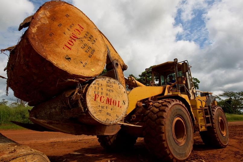 Australian Illegal Logging Prohibition Act (AILPA)