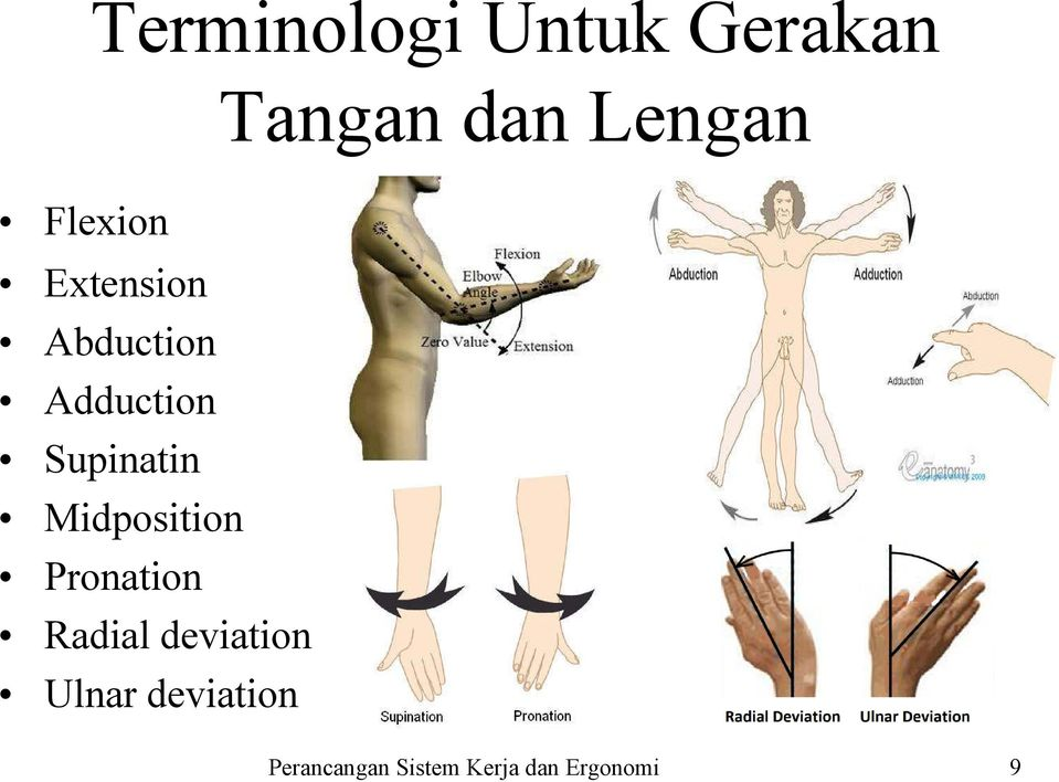 Adduction Supinatin Midposition