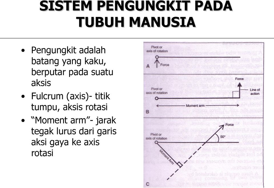 Fulcrum (axis)- titik tumpu, aksis rotasi Moment arm