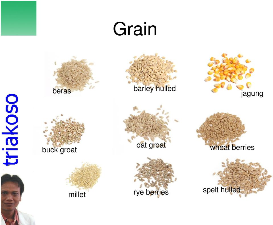 oat groat wheat berries
