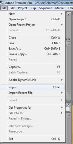 Format file yang disupport oleh Adobe Premiere Pro adalah QuickTime, Direct Show (Windows only), AVI (Windows only), WAV (Windows only), Adobe