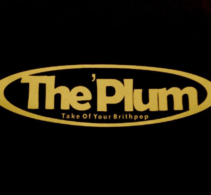 Contoh Proposal Kegiatan Dan Sponsorship Lengkap PROPOSAL LAUNCHING ALBUM BROTHER TO BROTHER THE PLUM 1.